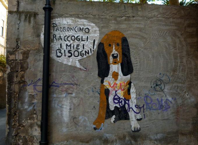 Cani, gatti e … diritti e doveri