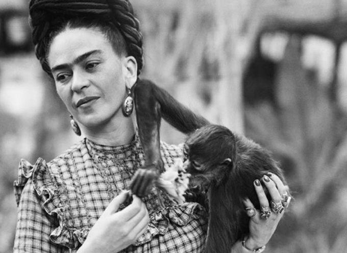 Le Biblioteche della città: dalla Liberazione a Frida Kahlo