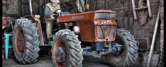 Job in Country: nuove opportunità di lavoro in agricoltura