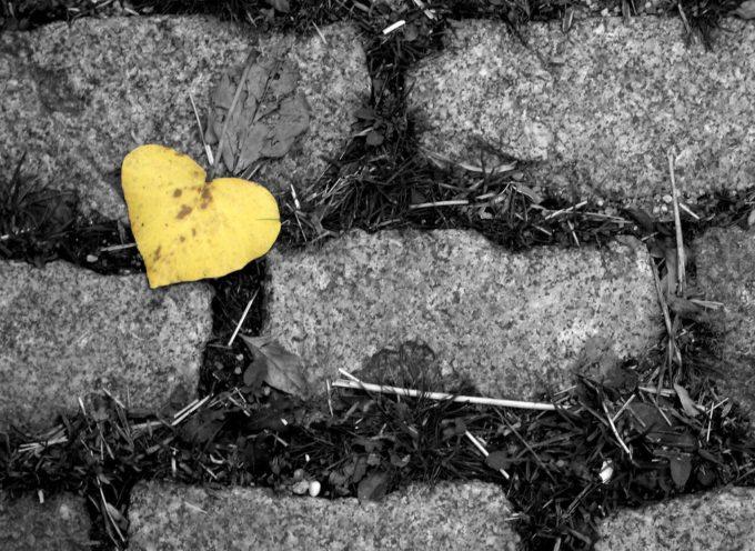In punta di cuore
