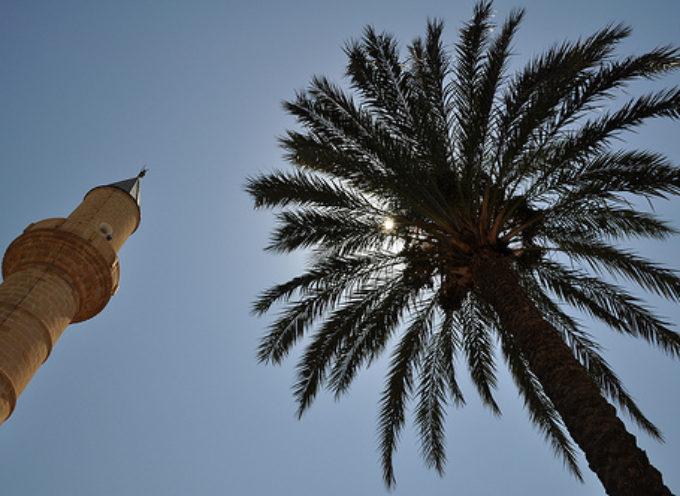 SVE brevissimo a Cipro sull'imprenditoria giovanile