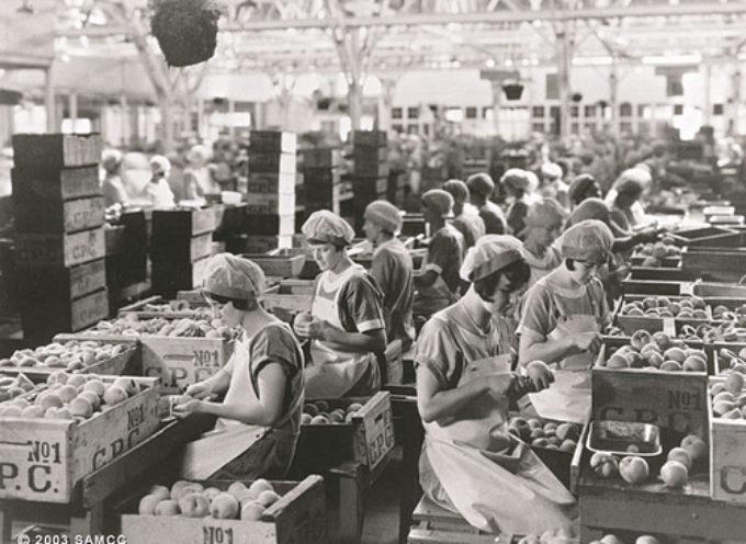 Luci sul Lavoro: festival e concorso per corti e fotografie