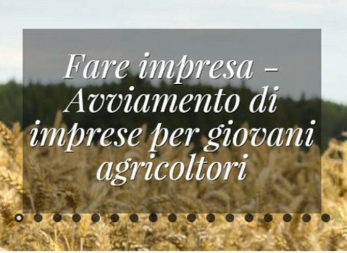 Nuovo bando Giovanisì – Fare Impresa per giovani agricoltori