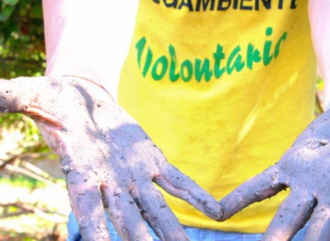 Ad Arezzo la Settimana del cibo e dell'agricoltura sostenibile, dal 23 al 30 Agosto