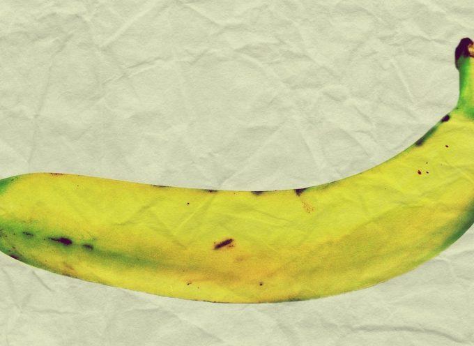 Concorso di Arte Contemporanea under 25 sul tema dell'alimentazione