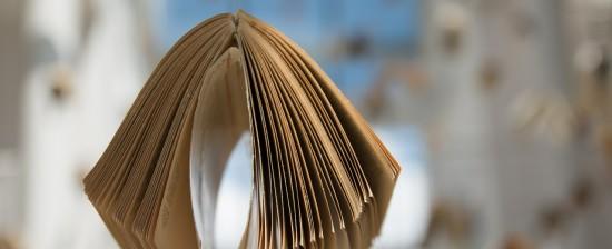 Università, nasce il Sistema Bibliotecario online degli Atenei toscani
