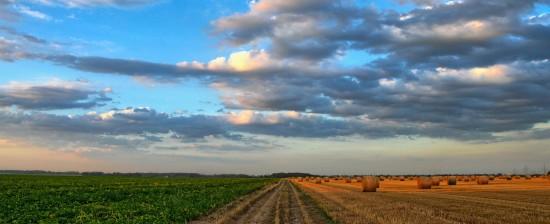 Giornata di studi sulle nuove tecnologie in agricoltura