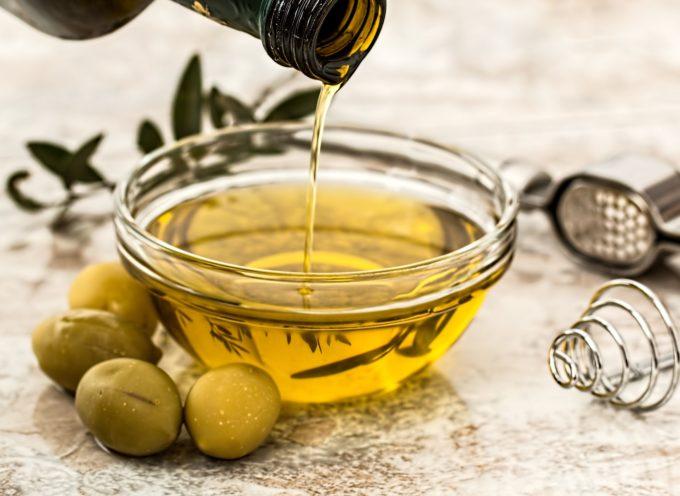 Minicorsi dedicati all'olivocultura e all'olio