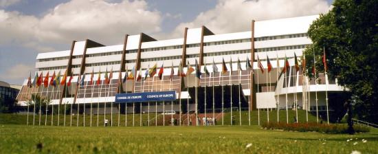 La Corte Europea cerca Volontari