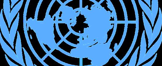 ONU, concorso per funzionari