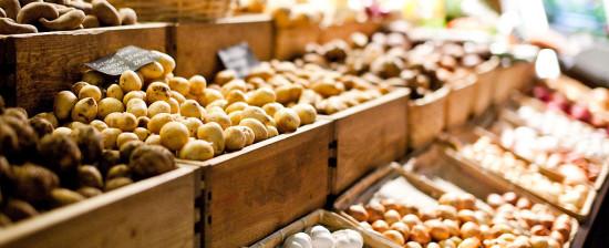 Logge del Grano e mercato coperto: il taglio del nastro