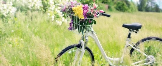 BikeTheNobel: Candidiamo la bici al Nobel per la Pace