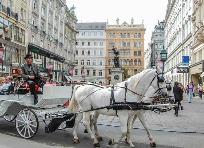 Volontariato internazionale Sve in Austria