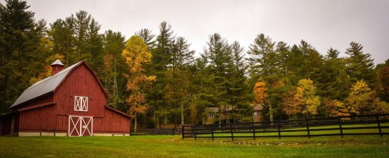 Opportunità SVE per conoscere la vita rurale scozzese