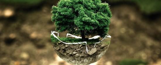 Il Piano di Azione per l'Energia Sostenibile (PAES): il questionario per i cittadini