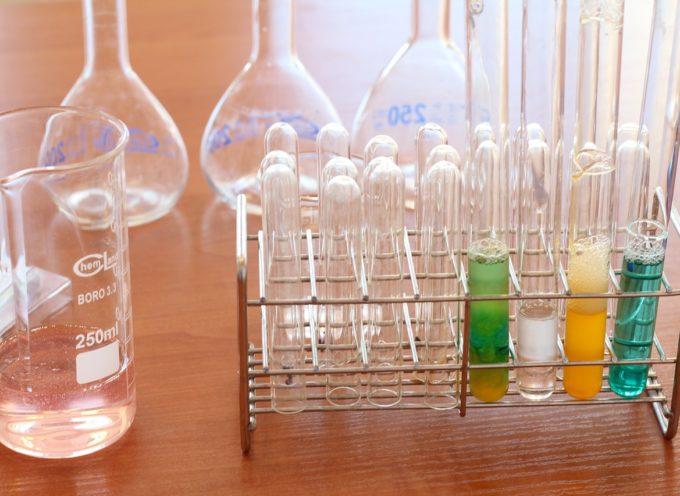 """Tirocini per studenti universitari presso il """"Barcelona Institute of Science and Technology"""""""