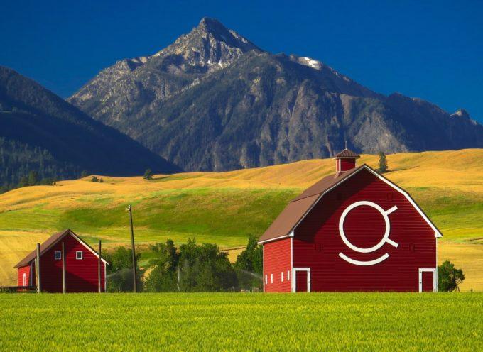 WWOOF: opportunità globali nelle fattorie biologiche!