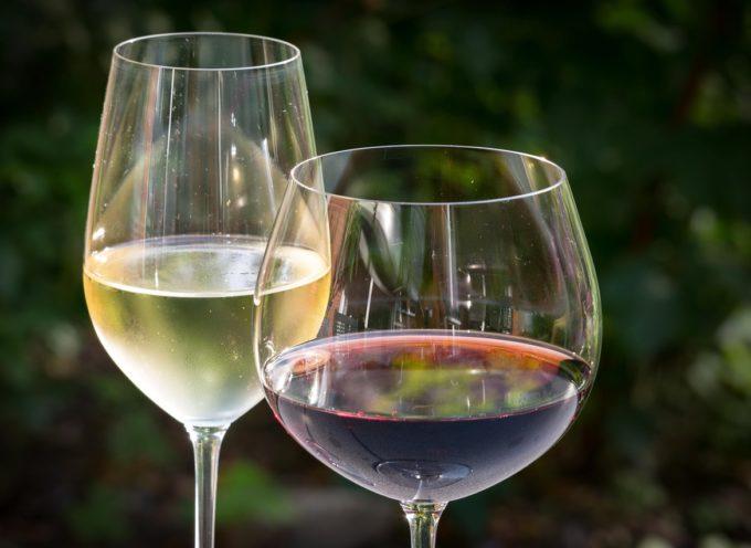Destinazione Vino: viaggio alla scoperta del vino aretino