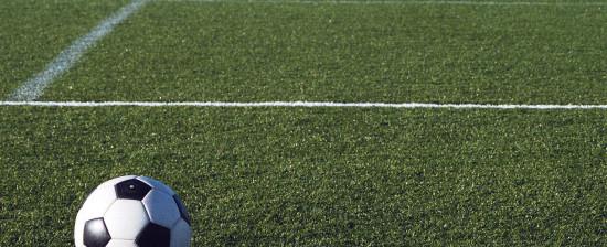 Concessione della gestione del campo da calcio B. Nespoli (Villaggio Dante)