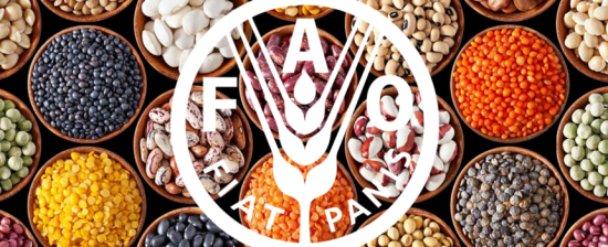 LAVORARE PER: FAO – Food and Agricolture Organization