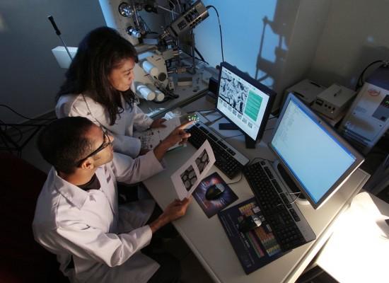BioUpper: Premio di Novartis Italia e Fondazione Cariplo per Start Up d'impresa nel settore delle scienze umane