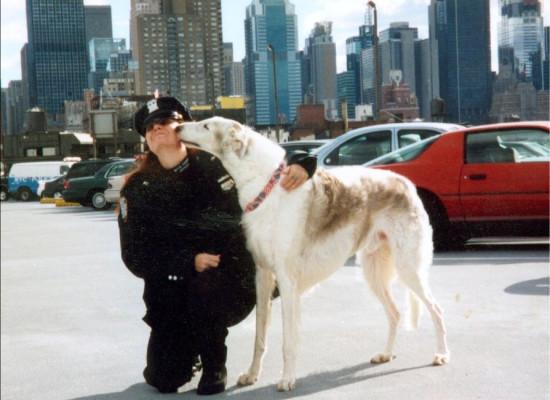 Corso di formazione in IAA (Interventi Assistiti con Animali) promosso da Associazione Gaia
