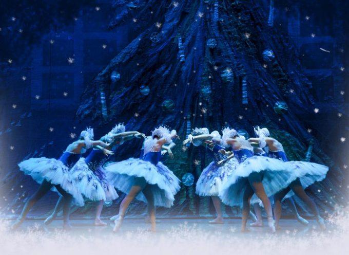 IL LAGO DEI CIGNI  Un balletto Incantato… ad Arezzo il 2 dicembre 2016