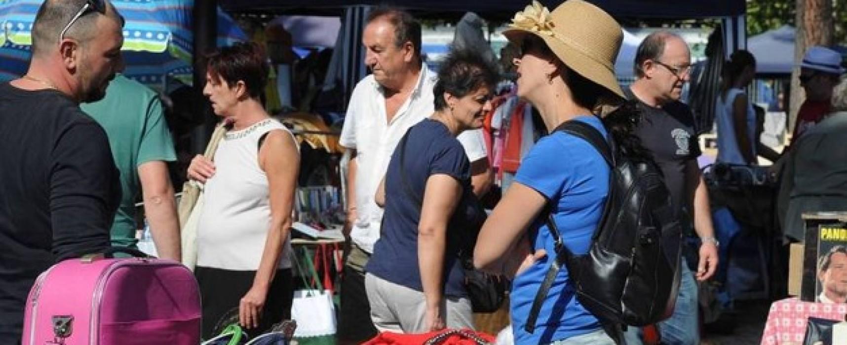 Il mercatino delle Pulci: Campo di Marte + Colle del Pionta