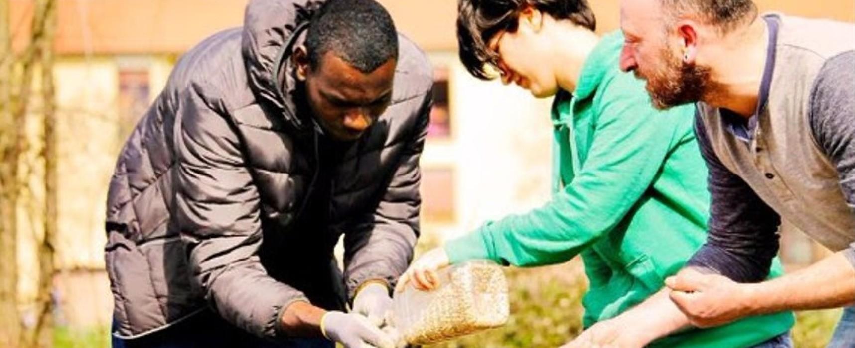 Su Mecenup al via il crowdfunding per sostenere il progetto: Un P-Orto in città – Esperienze di Agricoltura Civica e Sociale