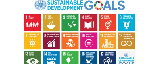 """Bando: """"Youth In Action for Sustainable Development Goals"""""""