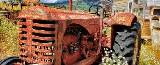Diocesi Arezzo: avviso esplorativo per manifestazioni d'interesse per l'affidamento di terreni/fabbricati
