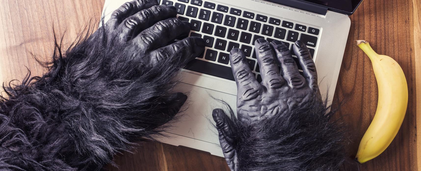 """CESCOT: """"WebSeller"""" corso GRATUITO di certificazione competenze WEBMARKETING/E-COMMERCE rivolto a DISOCCUPATI"""