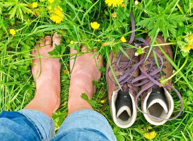 A piedi nudi nel parco: psicoecologia e prevenzione del burnout – seminario residenziale GRATUITO