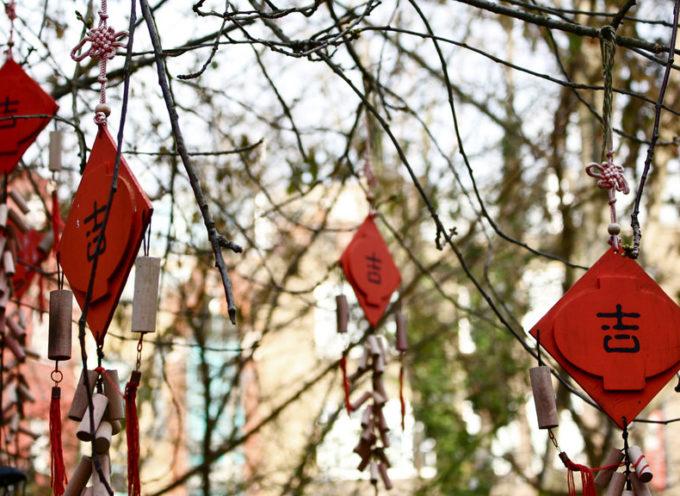 """""""Seminari Italia- Cina"""": al campus del Pionta quattro incontri dedicati alla lingua e cultura cinese"""