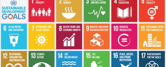 """Festival italiano dello sviluppo sostenibile  Mercoledì 23 maggio la presentazione del libro """"Società sostenibili e processi trasformativi"""""""