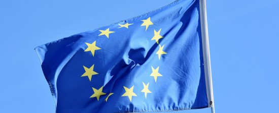 Stage dai 4 ai 12 mesi al Mediatore Europeo di Strasburgo e Bruxelles