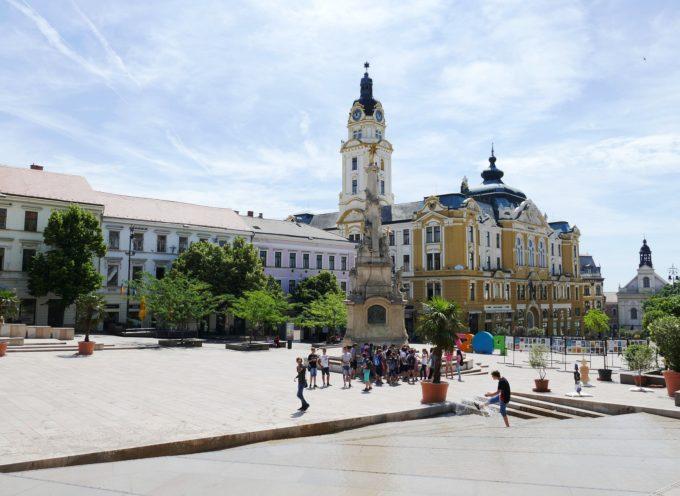 SVE in Ungheria su salvaguardia dell'ambiente e sviluppo sostenibile con Arcistrauss e Ökograf Egyesület