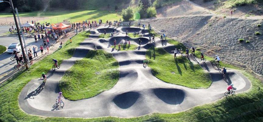 Comune di Arezzo: Concessione in gestione dell'impianto sportivo di Pump Track e similari (Trial, Jump, XC)