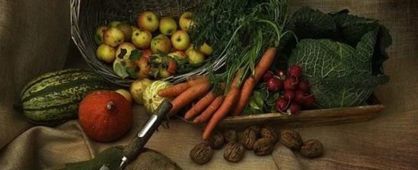 Ministero delle Politiche Agricole Alimentari e Forestali attiva bandi di finanziamento per oltre 31 milioni ai Distretti del cibo e Distretti Xylella