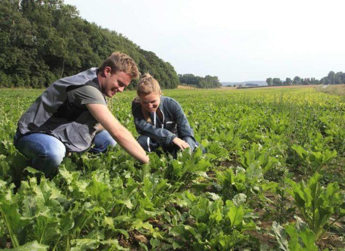 Lanciata la prima call del progetto Demeter (trasformazione digitale in ambito agroalimentare)