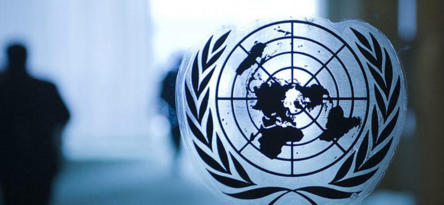 Fellowships Programme 2020/21 Nazioni Unite