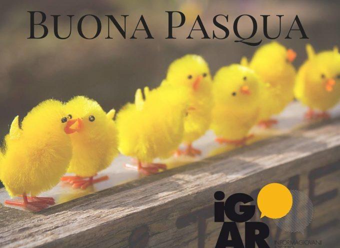 Buona Pasqua da Informagiovani Arezzo