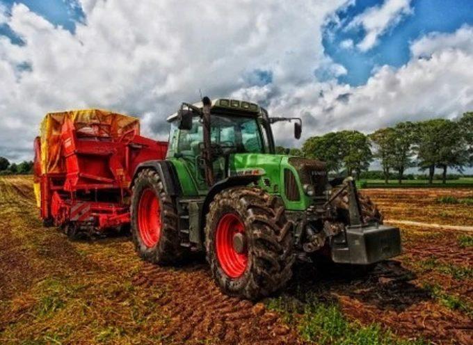 Regione Toscana: contributi di primo sostegno per imprese agricole danneggiate dagli eventi meteo del 27 e 28 luglio 2019
