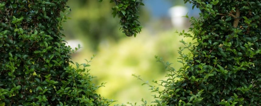 Legambiente: 3 giornate a fianco dei piccoli comuni con l'edizione 2020 di Voler Bene all'Italia