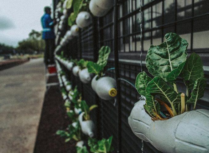 ESC in Ungheria sulle tematiche del riciclo e della sostenibilità ambientale