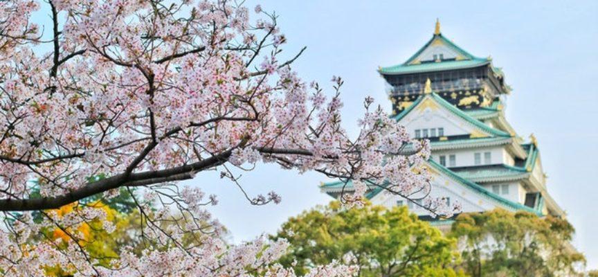 Borse di studio MEXT destinate a diplomati italiani per portare a termine un corso universitario in Giappone