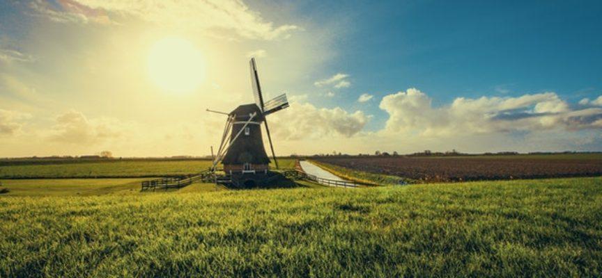 Corpo Europeo di Solidarietà in Olanda con Olde Vechte Foundation