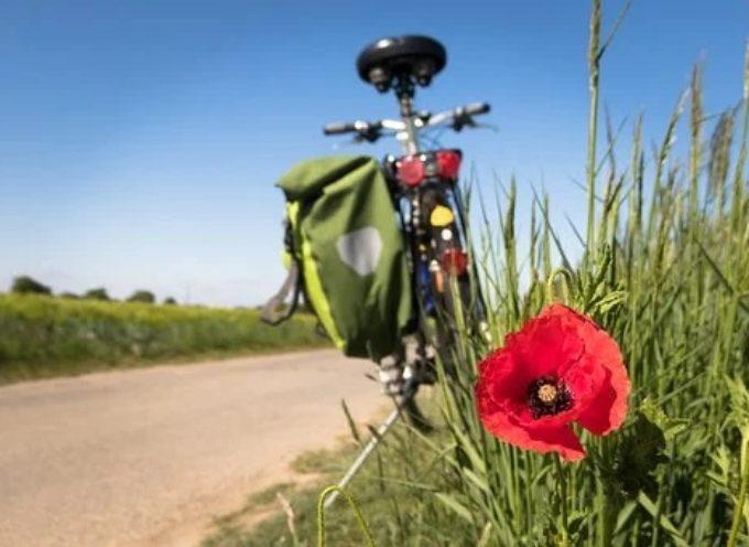 FactorYmpresa Turismo – Bike tourism 2020: incentivi per le migliori 10 idee