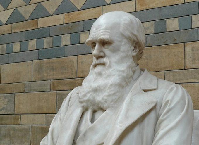 Darwin Day: UNISI omaggia il celebre scienziato con una serie di appuntamenti online