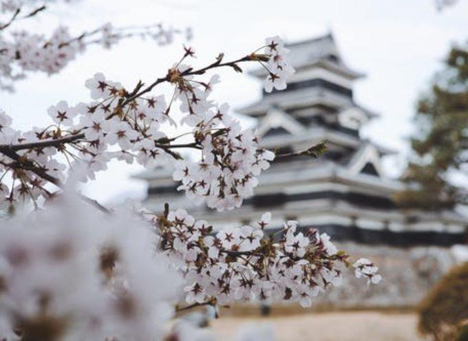 In Giappone con le borse di studio Canon per laureati